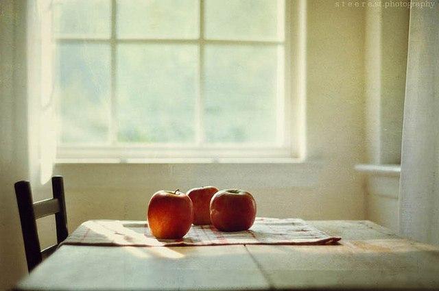 Идеи для фото – Одиночество от Dawn Hanna [10 шт]