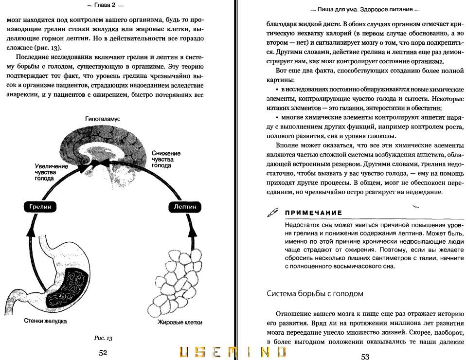 Научи свой мозг работать