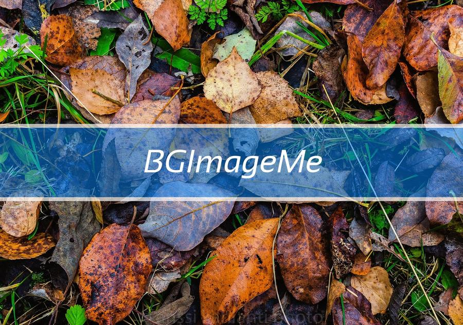 BGImageMe