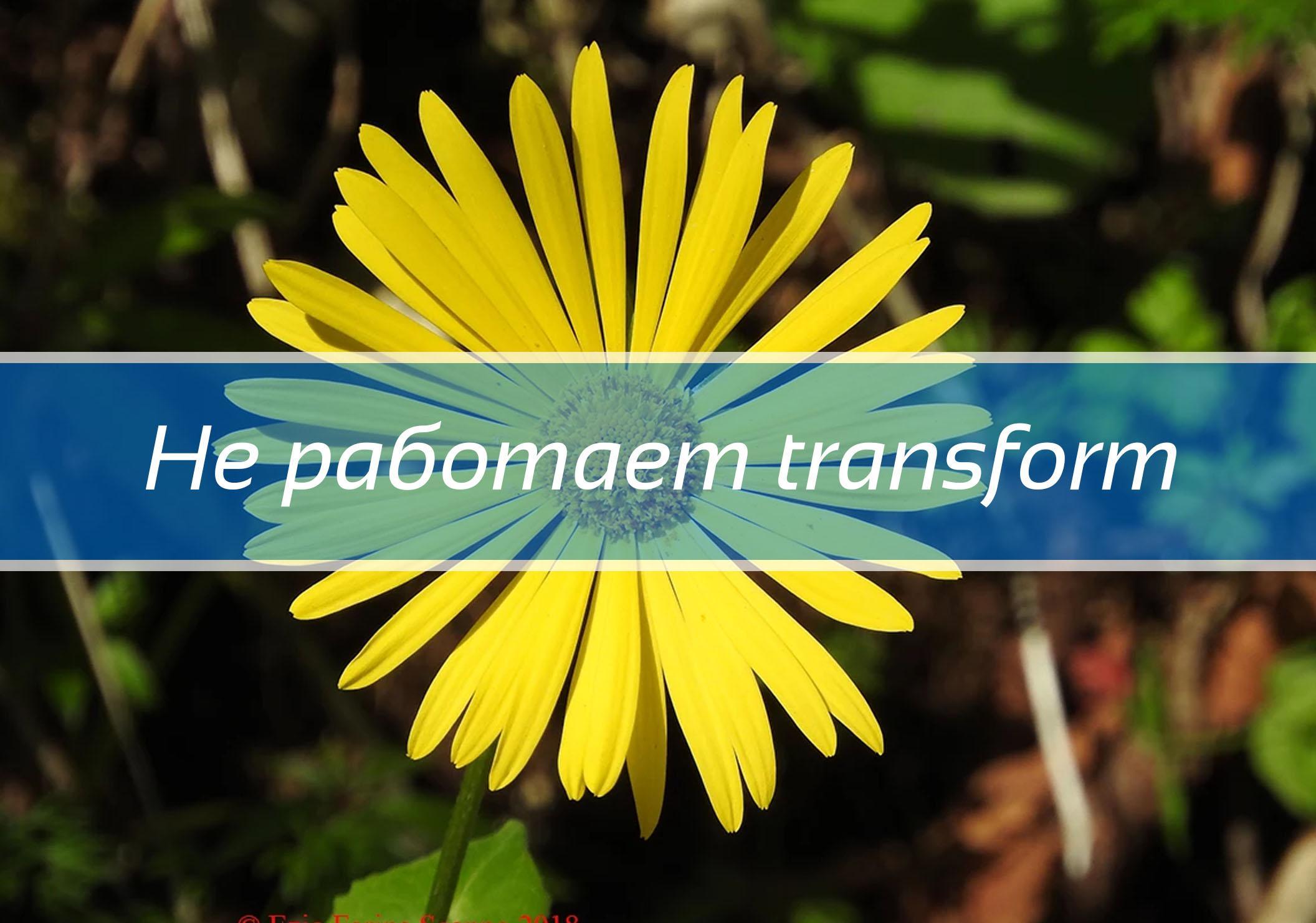 Не работает transform